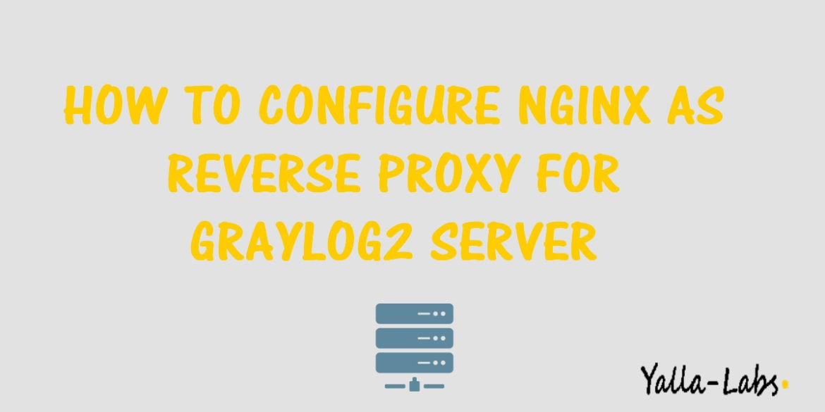 how to use reverse proxy